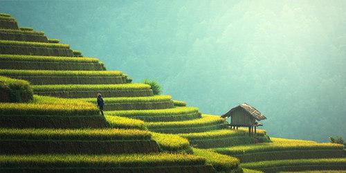 Il faut essayer la retraite en Thailande